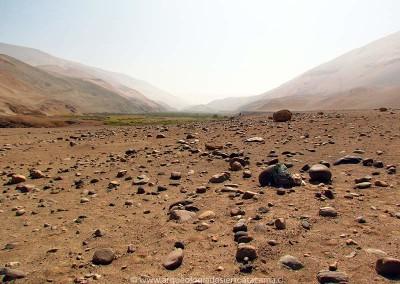Conanoxa W-1, valle de Camarones