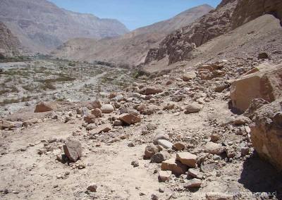 Sora Sur, valle de Lluta