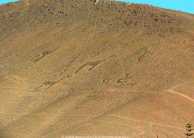 Geoglifo La Trpilla, valle de Azapa
