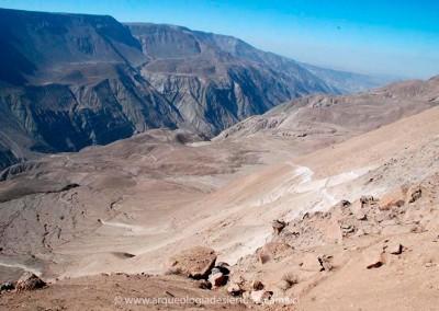Valle de Azapa, sector altos de Livilcar
