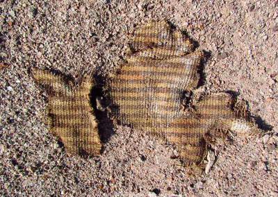 Fragmento de tejido de lana, sitio Km 41, valle de Lluta, Período Tardío