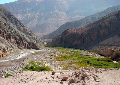 Valle de Lluta, sector Millune