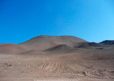 Valle de Azapa, sector Cerro Sombrero