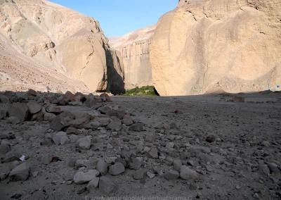 Chilpe, valle de Azapa